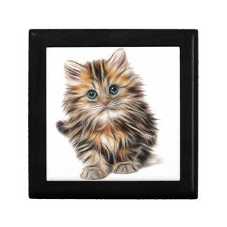Boîte À Souvenirs chaton