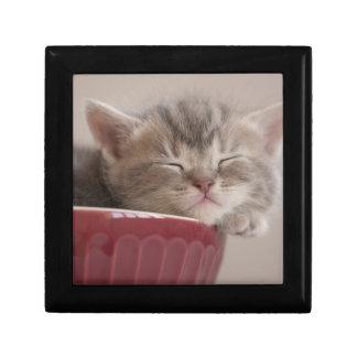 Boîte À Souvenirs Chaton dormant dans une cuvette