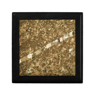 Boîte À Souvenirs Chaux sous le microscope