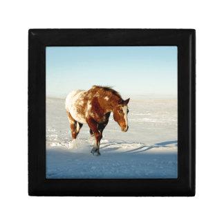 Boîte À Souvenirs Cheval en hiver