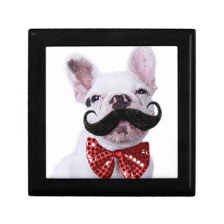 Boîte À Souvenirs Chiot de chien de Taureau de Français avec la