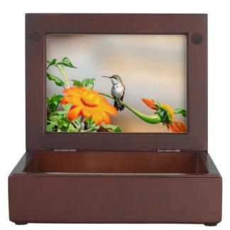 Boîte À Souvenirs Colibri sur un plante fleurissant