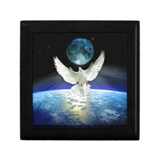 Boîte À Souvenirs Colombe de paix au-dessus de la terre de planète