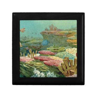 Boîte À Souvenirs couches de fond océanique