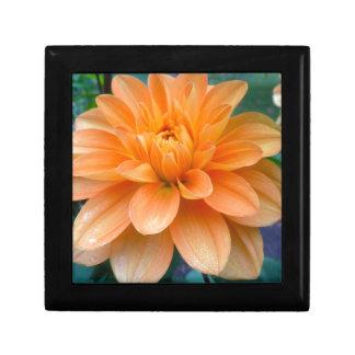 Boîte À Souvenirs Dahlia orange