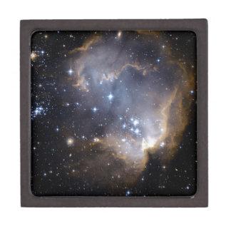 Boîte À Souvenirs De Première Qualité La NASA intelligente d'étoiles de NGC 602