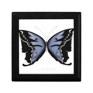 Boîte À Souvenirs Domestique bleue de marais de bleu du papillon 4
