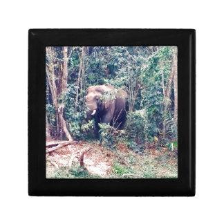 Boîte À Souvenirs Éléphant en Thaïlande