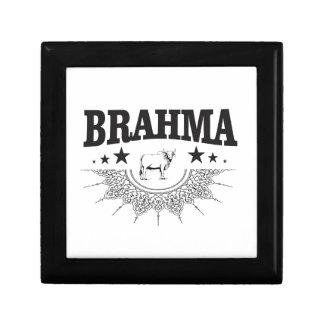 Boîte À Souvenirs Étoiles du taureau de Brahma