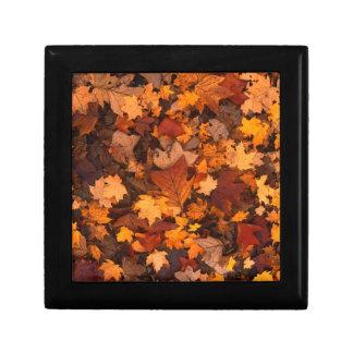 Boîte À Souvenirs feuillage d'automne