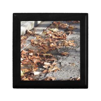 Boîte À Souvenirs Feuille mort se trouvant au sol en automne