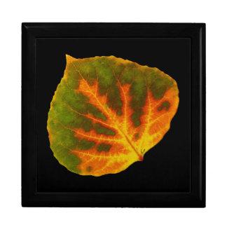 Boîte À Souvenirs Feuille orange et jaune verte #1 d'Aspen