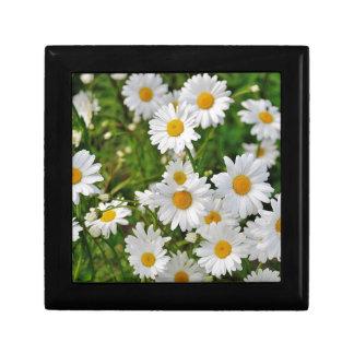 Boîte À Souvenirs Fleur de marguerite blanche