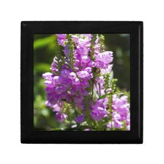 Boîte À Souvenirs Fleur obéissante ou fleur de dragon