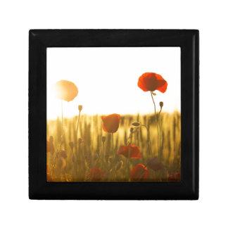 Boîte À Souvenirs Fleur rouge près de la fleur blanche pendant la
