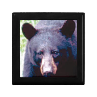 Boîte À Souvenirs grand ours noir