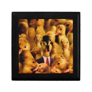 Boîte À Souvenirs Habillé pour le canard de succès