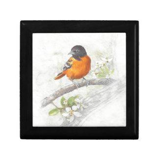 Boîte À Souvenirs Illustration tirée par la main d'oiseau de loriot