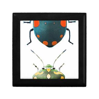 Boîte À Souvenirs Insect colored