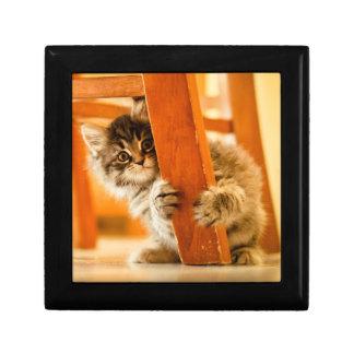 Boîte À Souvenirs Kitty sous la chaise