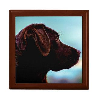 Boîte À Souvenirs Labrador au crépuscule