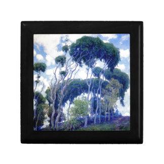 Boîte À Souvenirs Le type s'est levé - eucalyptus de Laguna - chef