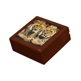 Boîte À Souvenirs Lions prédateurs dangereux
