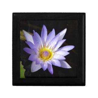 Boîte À Souvenirs lotus bleu du Nil