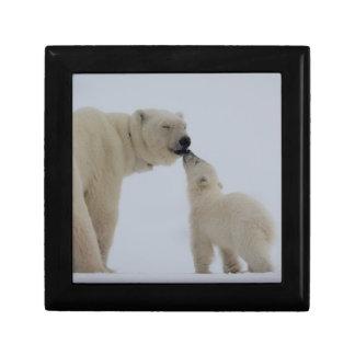 Boîte À Souvenirs Mère d'ours blanc avec CUB