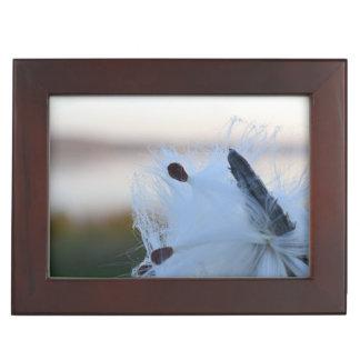 Boîte À Souvenirs Milkweed