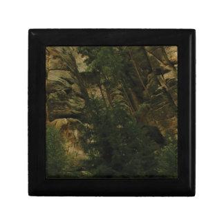 Boîte À Souvenirs morceaux et bosses de roche