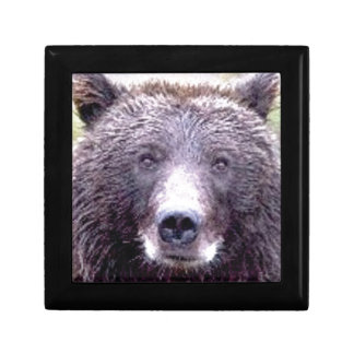Boîte À Souvenirs museau principal noir d'ours