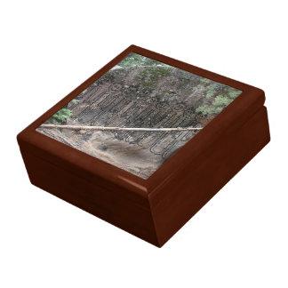 Boîte À Souvenirs Nuit de la pétroglyphe de marche de Gigglers
