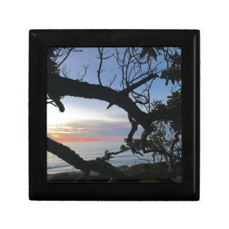 Boîte À Souvenirs Océan et arbres