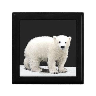 Boîte À Souvenirs Ours blanc CUB