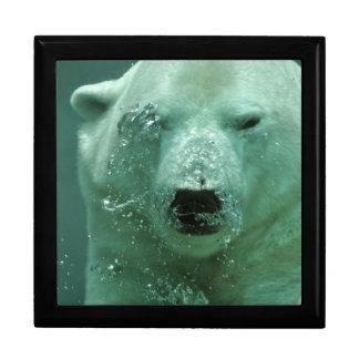 Boîte À Souvenirs Ours blanc sous l'eau