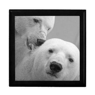 Boîte À Souvenirs Ours blancs