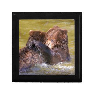 Boîte À Souvenirs Ours gris dans l'eau