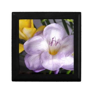 Boîte À Souvenirs ouvrez le freesia violet