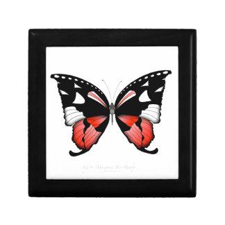 Boîte À Souvenirs papillon de rouge de la figue 4 par les fernandes