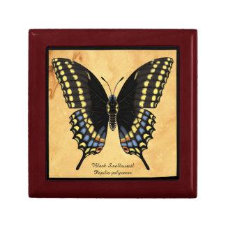 Boîte À Souvenirs Papillon noir de machaon