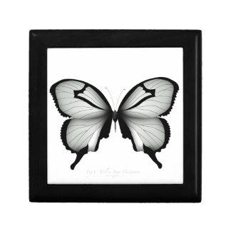 Boîte À Souvenirs Papillon sage de chasseur de vallée