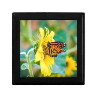 Boîte À Souvenirs Papillon sur un tournesol