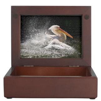 Boîte À Souvenirs Pélican renversant dans l'eau