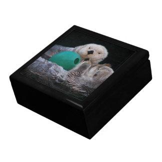 Boîte À Souvenirs Photo espiègle de loutres de mer