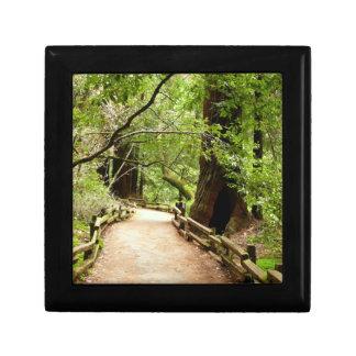 Boîte À Souvenirs Photographie de nature du chemin II en bois de