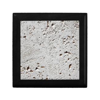 Boîte À Souvenirs Plan rapproché fossile de surface de tuile de
