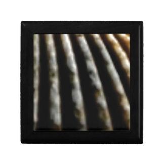 Boîte À Souvenirs plis de brun de la coquille