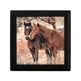 Boîte À Souvenirs Pousser du nez des chevaux