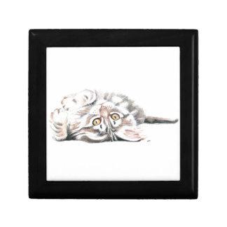 Boîte À Souvenirs Ragondin mignon Kitty du Maine d'aquarelle
